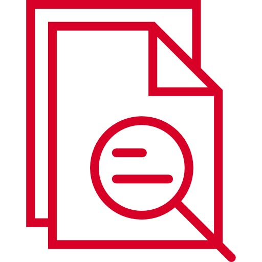 search document icon